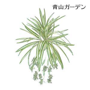人工植物 造花/オリヅルラン/GN-33/フェイクグリーン/ディスプレイ/飾り|garden