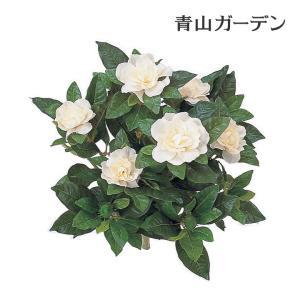 人工植物 造花/クチナシ/GN-49/フェイクグリーン/ディスプレイ/飾り|garden