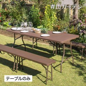 テーブル 机 屋外 家具 ファニチャー プラ 折りたたみ ガーデン タカショー / イージーキャリー...