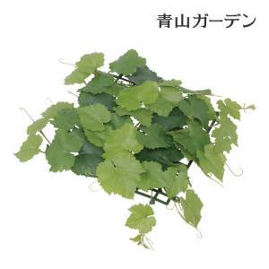 人工植物 造花/グレープアイビーマット/GN-78/フェイクグリーン/ディスプレイ/飾り garden