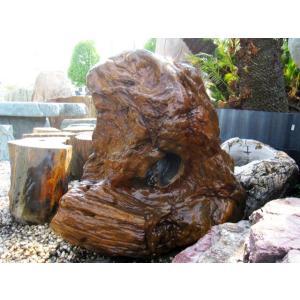 木化石 庭石 珪化木 景石
