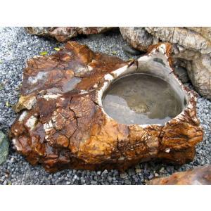 手水鉢 つくばい 木化石 水鉢 庭石 珪化木 蹲 景石...