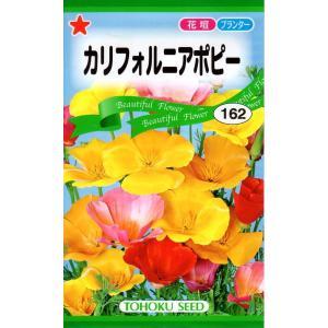 【種子】カリフォルニアポピー トーホクのタネ|gardeningivy