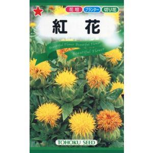 切花やドライフラワーに最適な花です。紅をとる場合は秋まきの方が向いています。 コロコロとした花が花壇...