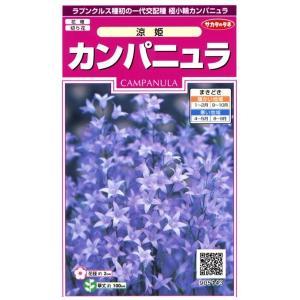 【種子】カンパニュラ 涼姫 サカタのタネ