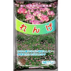 【種子】れんげ草 1kg入りお徳用大パック
