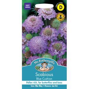 【輸入種子】 Mr.Fothergill's Seeds RSPB Range Scabious Blue Cushion RSPB レンジ スカビオサ・ブルー・クッション ミスター・フォザーギルズシード
