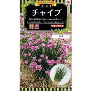 【種子】チャイブ タキイのタネ