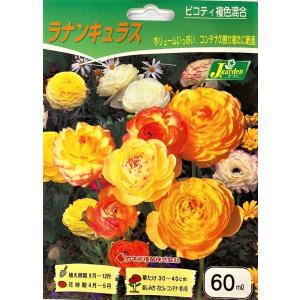 【花球根】 ラナンキュラス ピコティ 複色混合 60ml入り