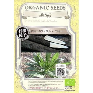 風味が牡蠣に似ていることから 「オイスタープラント」とも呼ばれるゴボウに似た根菜で、 植物名はバラモ...