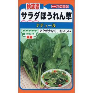 【種子】 秋まき サラダほうれん草 ナチュール トーホクのタネ