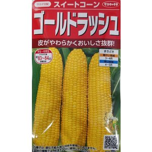 【種子】 ゴールドラッシュ みわくのコーン 早くできるゴールドラッシュ サカタのタネ