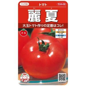 農林水産大臣賞に輝く、生育力が強く病気に強い、着果性によい大玉トマトです。 果肉はしっかりとして日持...