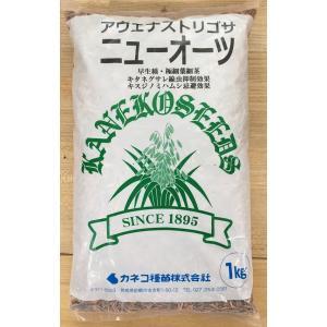 種子 えん麦 アウェナ ストリゴサ ニューオーツ 1kg カネコ種苗の商品画像|ナビ