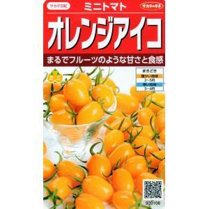 【種子】 ミニトマト オレンジアイコ サカタのタネ