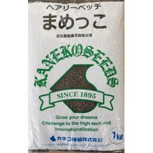 ヘアリーベッチは土壌に窒素を固定する緑肥として利用されるマメ科の1年草です。 草丈が低く地面を覆うよ...