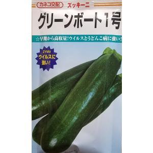 【種子】ズッキーニ グリーンボート1号 100粒 カネコ種苗のタネ