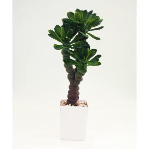 アーティフィシャルフラワー 多肉植物 モニラ〔高さ:約57cm〕 57140|gardenmate