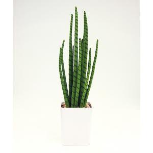 アーティフィシャルフラワー 多肉植物 スピカ〔高さ:約55cm〕 57142|gardenmate