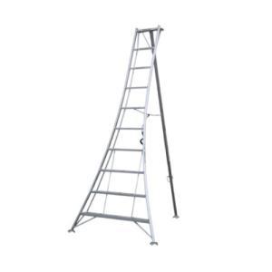 アルミ三脚 10尺 KWX-300 300cm 3.0m 脚立 踏み台 56050|gardenmate