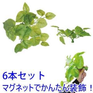 マグプランツ マグネット式人工観葉植物 ポトスライム 6本セット (BY-DCMP-001) gardens