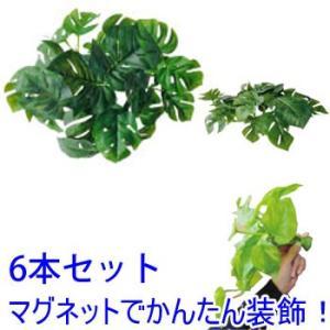 マグプランツ マグネット式人工観葉植物 ヒメモンステラ 6本セット (BY-DCMP-002) gardens