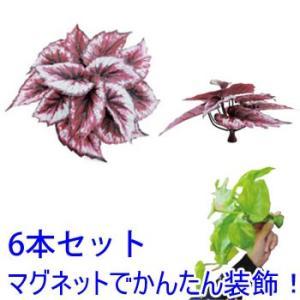 マグプランツ マグネット式人工観葉植物 レックスベゴニア 6本セット (BY-DCMP-005) gardens