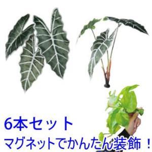 マグプランツ マグネット式人工観葉植物 アマゾニカ 6本セット (BY-DCMP-006) gardens