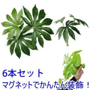 マグプランツ マグネット式人工観葉植物 ヤツデ 6本セット (BY-DCMP-007) gardens