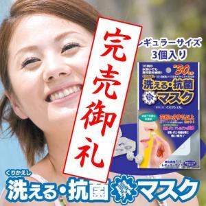花粉99%以上カットの鼻に挿入するマスク くり返し洗える抗菌 マスクシェル レギュラーサイズ 3個入り (花粉対策鼻マスク) (CS-MSN-R01) gardens