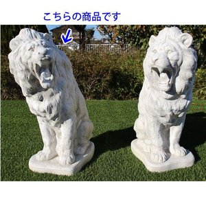 ライオン・フェローチォ・左 H73cm (NS-TE3540)