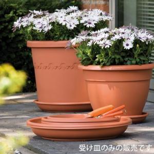 【アウトレット】ソーサー 35 (テラコッタ) (OUT-E905035-TC) gardens