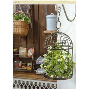 バードゲージ 鳥かごプランター ハンギングプランター Ancien fil バードケージS|gardenyouhin|02