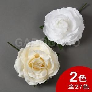 バラ Apolonia (アポロニア) (ホワイト系) [フラメンコ用]|garogaro