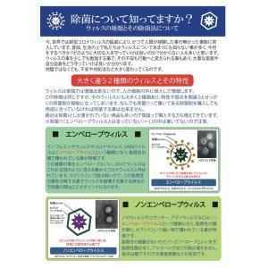 除菌スプレー 手 携帯 日本製 未来プロミスト 200mm 保湿タイプ ノン アルコール 手指用 ウイルス除去|gaskigu-hills|03