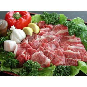 ezBBQ 産地直送!美熊野牛バーベキューセットA 計500g入 牛肉|gaskigu