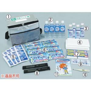 熱中症応急常備用 つくしの熱中対策応急セットL CN5052...