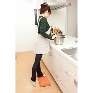 室内用 健康器具 キラクル オレンジ&ブラウン 足 ふくらはぎ お尻 腹筋 に効果あり|gdw-shop
