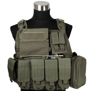 FLYYE MOLLE Style PC Plate Carrier with Pouch set RG|geelyy