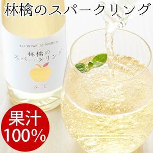 【果汁100%】林檎のスパークリングジュース5本セット|gei-iwatemeisan