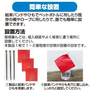 プラスリブ  撃退!ハクビシン 屋内用 3個入|gekitai-factory|03