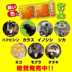 プラスリブ  撃退!ネコ  3個入|gekitai-factory|05