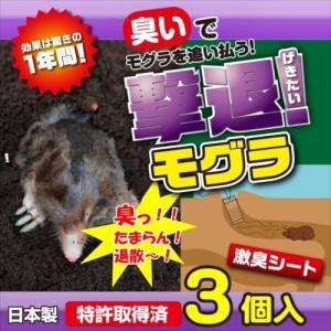 プラスリブ  撃退!モグラ 3個入|gekitai-factory