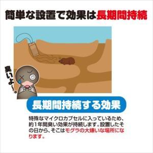 プラスリブ  撃退!モグラ 3個入|gekitai-factory|02