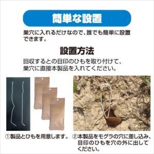 プラスリブ  撃退!モグラ 3個入|gekitai-factory|03