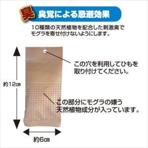 プラスリブ  撃退!モグラ 3個入|gekitai-factory|04
