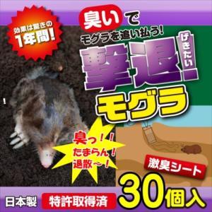 プラスリブ  撃退!モグラ 30個入   |gekitai-factory
