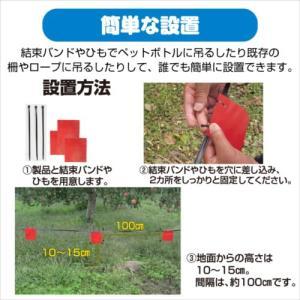 プラスリブ  撃退!タヌキ 10個入   |gekitai-factory|03