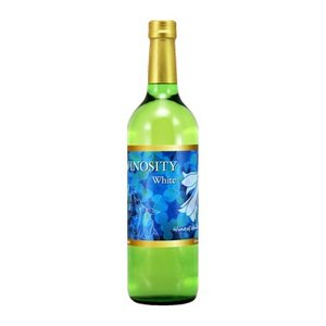 チリ ワイン ヴィノシティー 白 750ml×1本