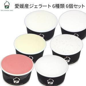 アイスクリーム ジェラート 6個セット 愛媛産ジェラート6種類 詰め合わせ 暑中お見舞い ギフト プレゼント お祝い 御中元
